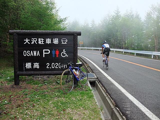 2010_06120063.JPG