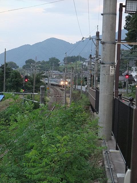 2010_09110095.JPG
