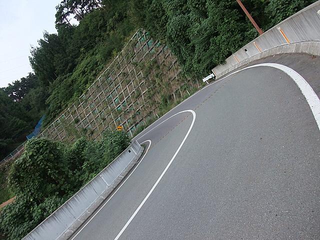 2010_09110074.JPG
